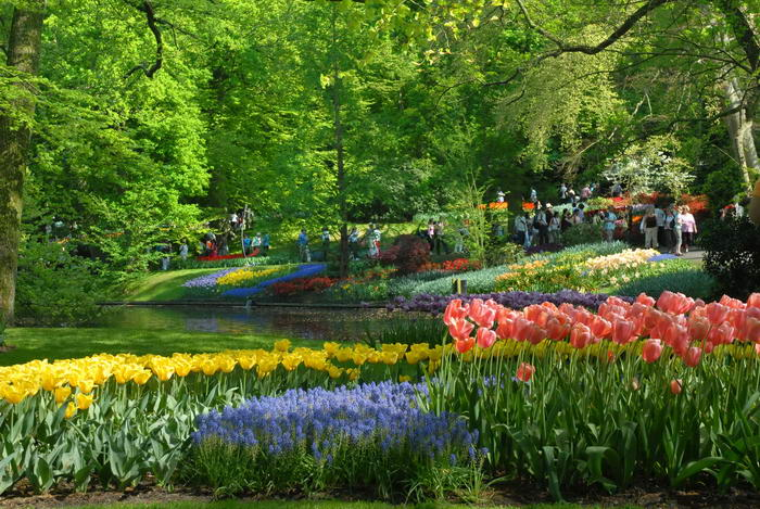Сад Европы - второе название королевского парка. Море великолепных весенних цветов: тюльпанов, нарциссов, гиацинтов дополняют каналы, водопады и фонтаны.