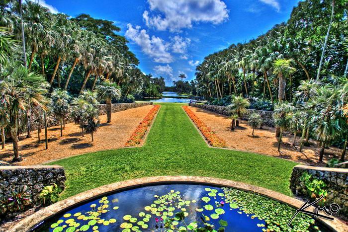 В тропическом саду Fairchild Tropical Botanic Garden растут самые большие деревья в мире - баобабы.