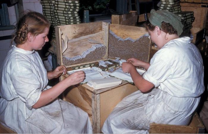 Женщины, работающие на папиросной фабрике. Тбилиси, 1964 год.