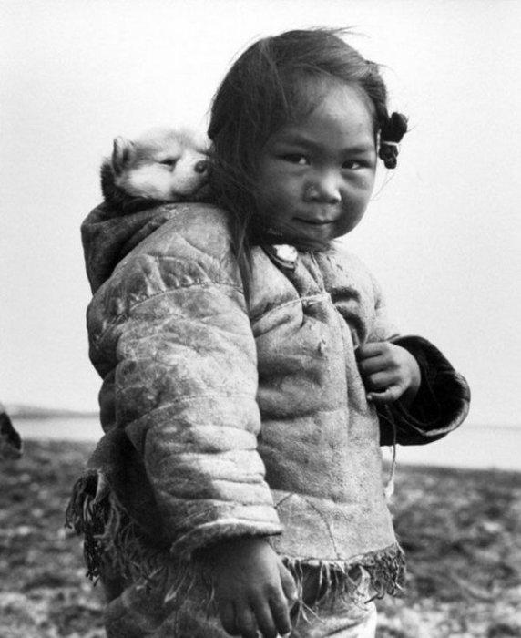 Маленькая эскимоска и ее хаски на спине. СССР, 1949 год.
