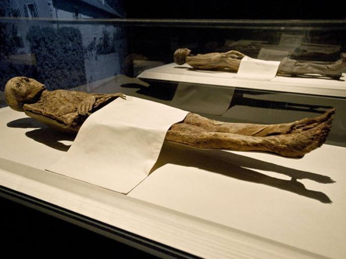 На переднем плане мумии баронессы Шенк фон Гайерн и барона фон Хольца, частично прикрытые по просьбе семьи.