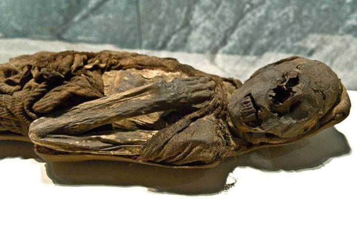 Мумия перуанца, умершего в возрасте 30 лет 1000 лет назад.