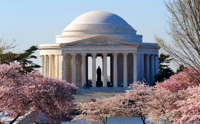 Весной цветущие деревья вишни обрамляют фасад мемориала Томаса Джефферсона у залива Тайдал Бэйсин.