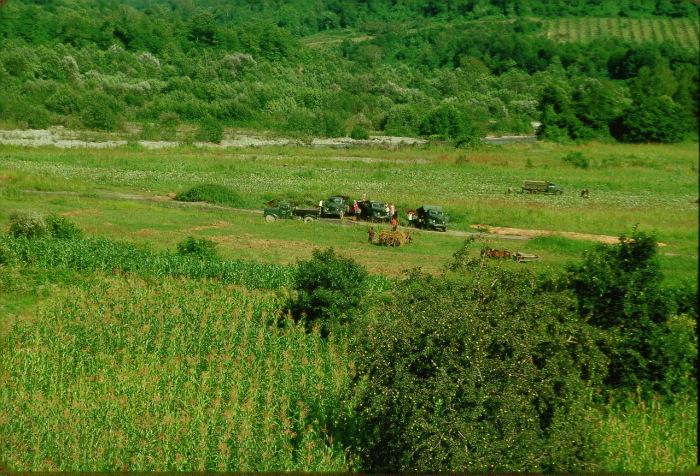 По дороге в Красную Поляну в долине реки Мзымта в Сочи.