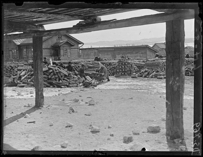 Женщины пилят дрова во дворе. Хилок, март, 1919 года.