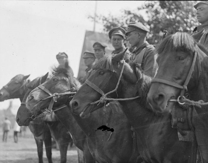 Русские кавалеристы на парадном построении. Сибирь, 1919 год.