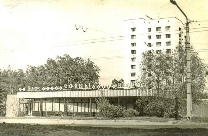 Кафе Сосны возле шоссе Космонавтов.