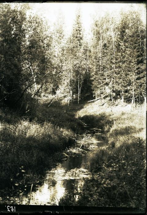 Ручей возле юрты Соровых.