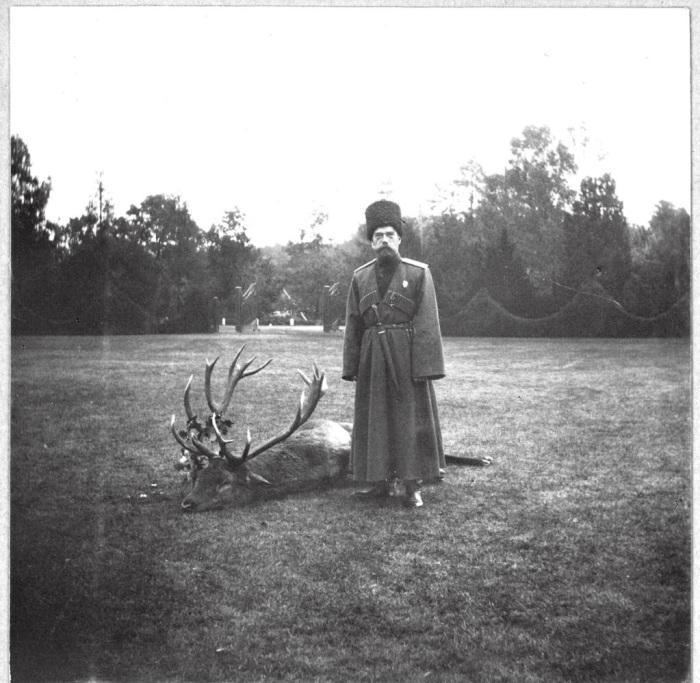 Николай II позирует на фоне оленя, убитого в Спале незадолго до травмирования цесаревича.