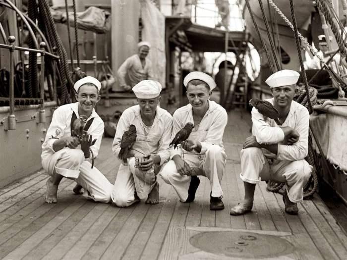 Матросы ВМС США и их питомцы. США, 1923 год.
