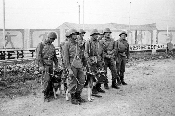 Советские солдаты с немецкими овчарками, обученными находить мины. Кабул, 1 мая 1988 года.