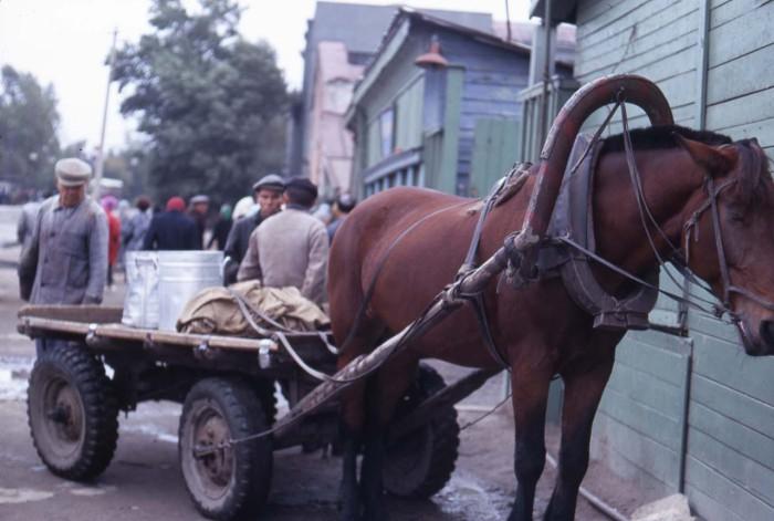 Повозка, стоящая неподалеку от рынка. СССР, Новосибирск, 1969 год.