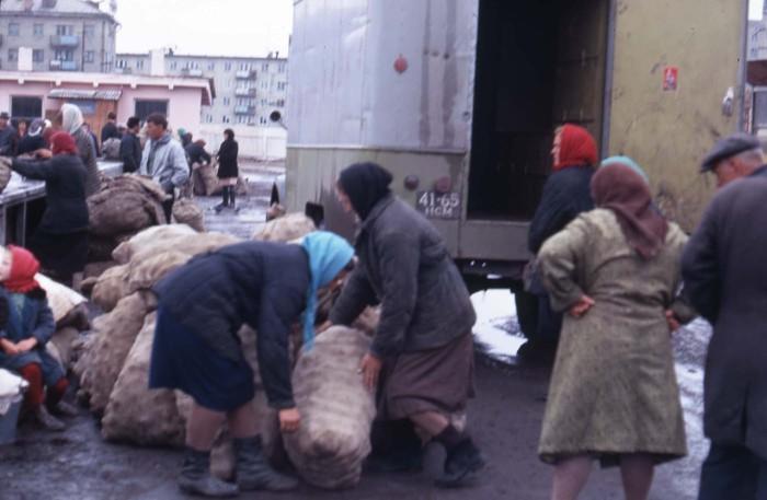 Женщины разгружающие привезенную картошку на рынке. СССР, Новосибирск, 1969 год.