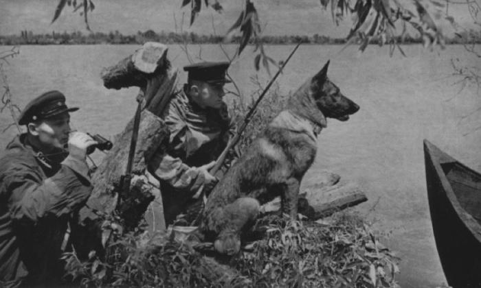 Советские пограничники в дозоре. Фотография была сделана для газеты на одной из застав на западной границе СССР 20 июня 1941 года.