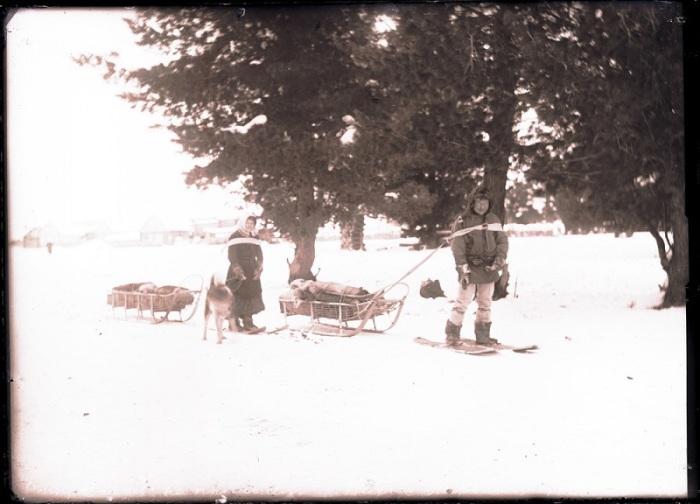 Туземка помогает собаке тащить нарту до промысловой избушки. Ханты-Мансийский автономный округ, Нижневартовский район, село Ларьяк, 1912 год.