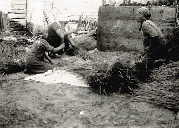 Нелёгкая работа для женщин и детей. СССР, Украина, 1941 год.