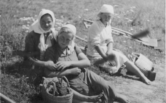 Работа в поле. СССР, Украина, 1941 год.