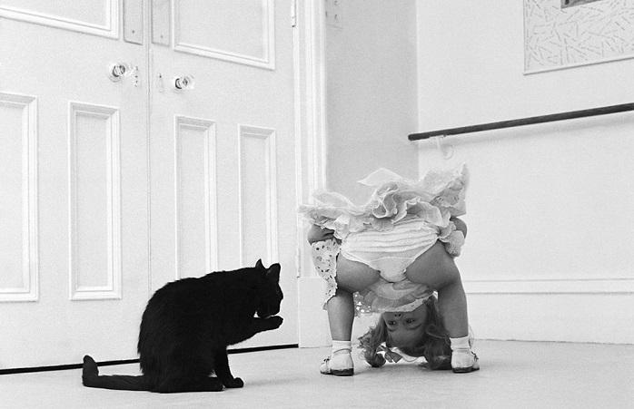 Трогательные фотографии Джона Дрисдейла о настоящей дружбе.