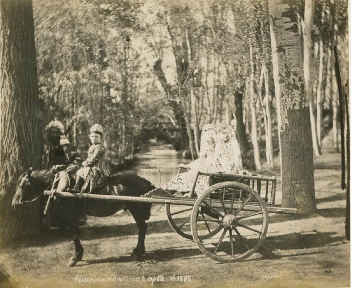 Бухарская арба. Середина 19 века.