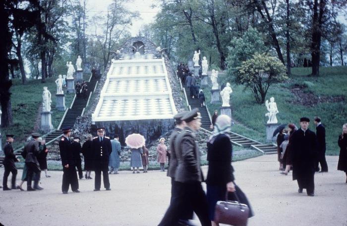 Шахматная гора Каскад на территории Петергофа. СССР, Ленинград, 1959 год.