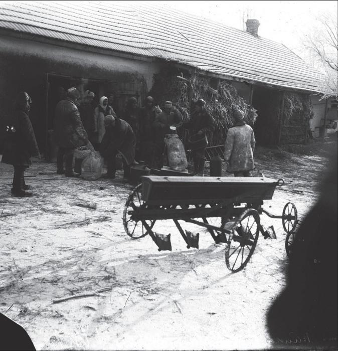 Сбор последнего оставшегося зерна. СССР, Украина, Донецкая область, 1930 год.