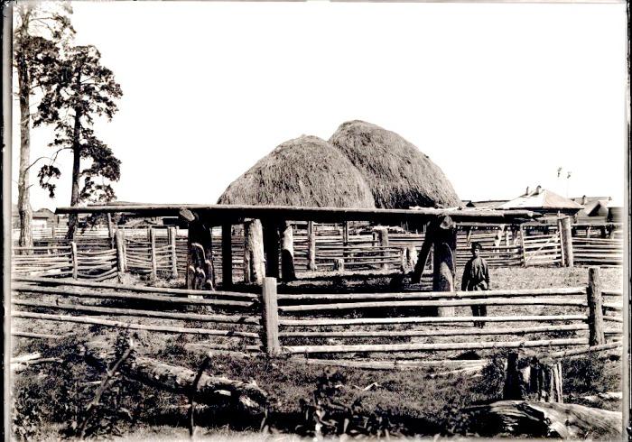 Склад сена. Село Накрачинское, начало ХХ века.