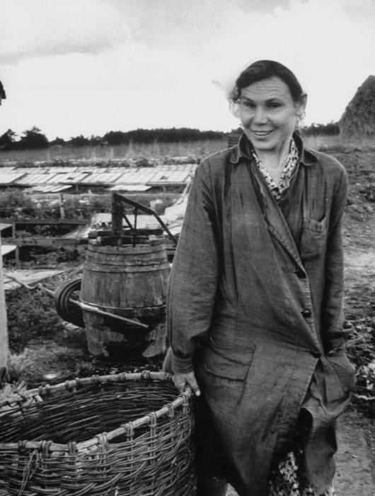 Женщина, работающая в поле. СССР, 1956 год.