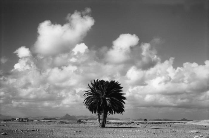 Государство на северо-востоке Африки в районе Африканского Рога.