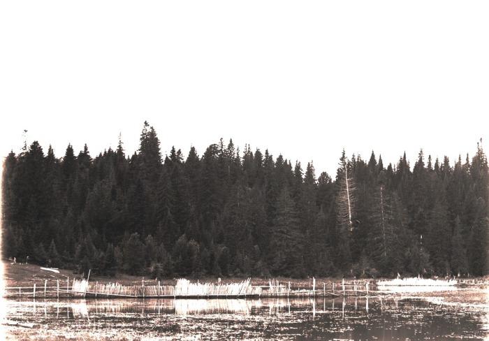 Рыболовный садок. Село Филинское, 1912 год.