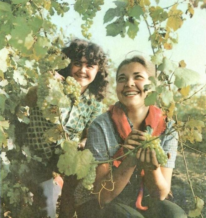 Советские девушки в своей естественной красоте.