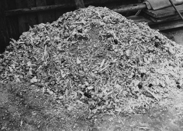 Куча пепла и костей в концентрационном лагере Бухенвальд.