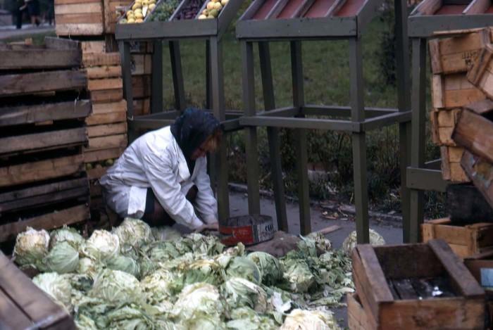 Женщина, подготавливающая капусту к продаже. СССР, Новосибирск, 1969 год.