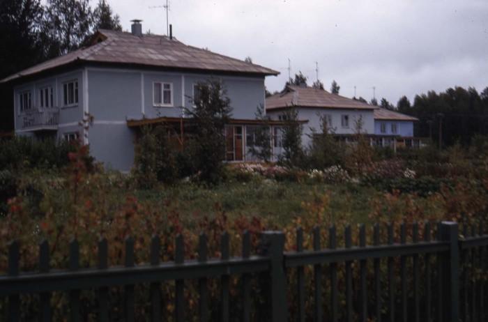 Дома докторов наук в Академгородке.  СССР, Новосибирск, 1969 год.