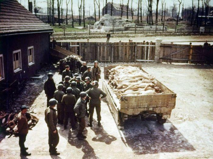 Осмотр и вывоз тел погибших в лагере Бухенвальд.