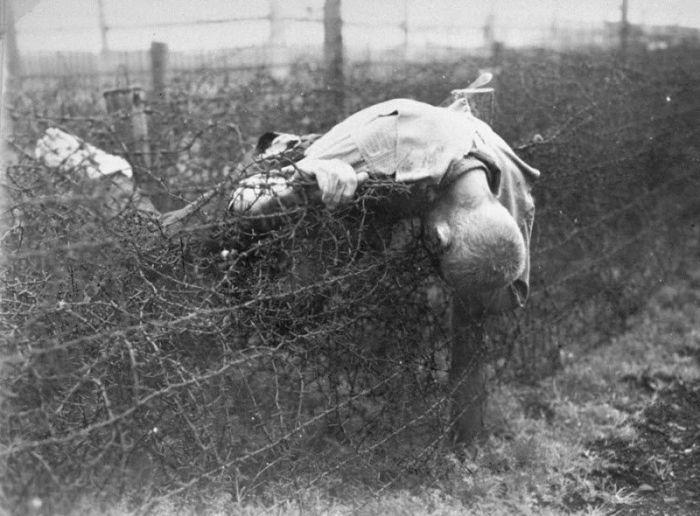 Труп заключенного лежит на заборе из колючей проволоки в Лейпциг-Текла.