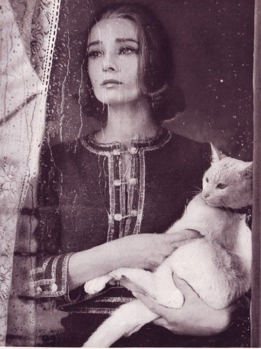 Одри Хепберн с котом по кличке Rhubarb.