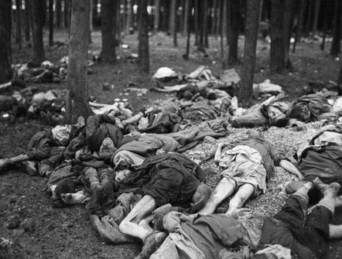 Жертвы нацистских медицинских экспериментов, которые были вывезена в лес по приказу американцев.