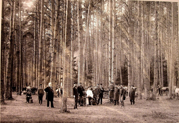 Группа участников царской охоты на опушке леса.