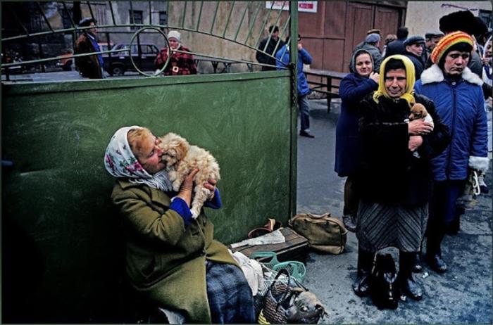 Уличная торговля домашними животными.  СССР, Украина, 1986 год.