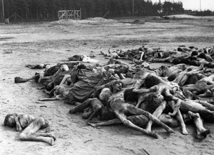Тысячи мертвых тел в Берген-Бельзен, которые были найдены после освобождения лагеря британскими войсками.