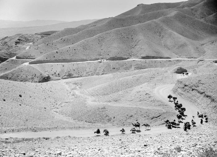 Караван мулов и верблюдов движется по извилистым тропам перевала Латабанд на пути в Кабул, 8 октября 1949 года.