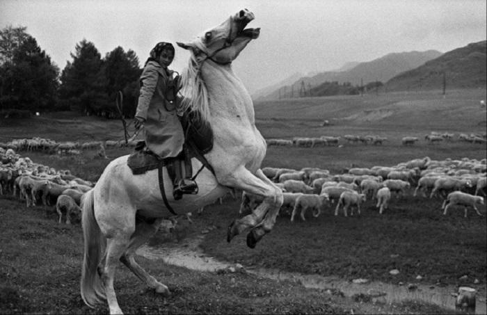 С раннего возраста цыгане знакомятся с лошадью и помогают взрослым пасти стада. СССР, Сибирь, село Онгудай, 30 июля 1980 года.
