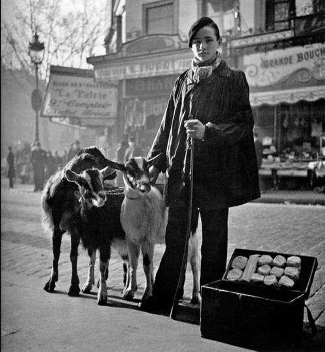 Продажа козьего сыра в сопровождении коз в 1935 году.