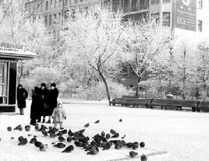 Тверской бульвар. СССР, Москва, 1956 год.