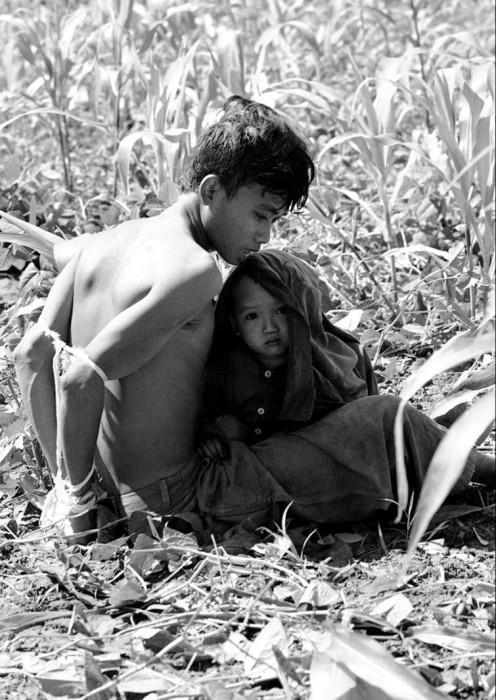 Вьетнамский ребенок цепляется за своего отца, который был задержан и связан, как подозреваемый в содействии партизанам Северного Вьетнама в 1966 году.