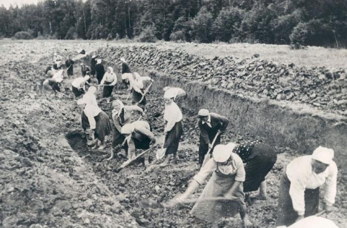 Посадка фруктовых деревьев. СССР, Запорожье, 1959 год.