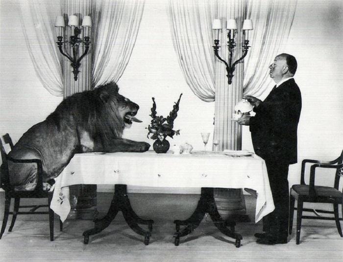 Альфред Хичкок прислуживает льву с заставки «Metro-Goldwyn-Mayer» в 1957 году.