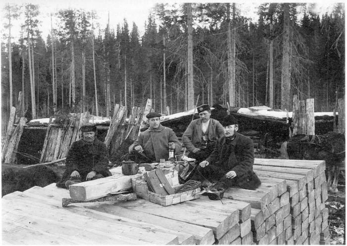 Приём леса, заготовленного для отправки за границу. Архангельская губерния, Холмогорский уезд, 1910 год.