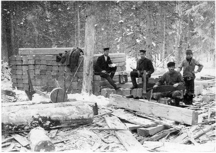Лесозаготовители во время работы. Архангельская губерния, Холмогорский уезд, 1910 год.