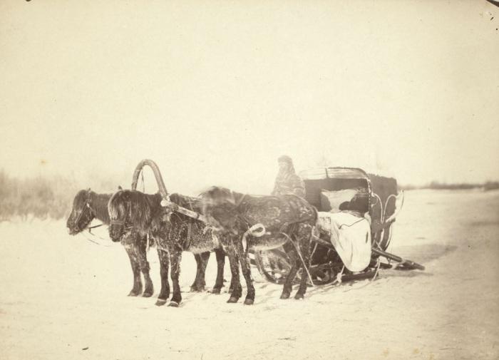 Сани, запряженные тройкой лошадей.